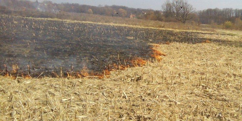 Požar trave