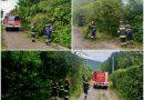 DVD Gornji Desinec interveniralo na 5 izvanrednih događaja tijekom olujnog nevremena u naseljima Gornji Desinec i Prhoć!