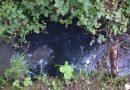 Intervencija u Orešju Okićkom zbog izlijevanja ulja u potok Gonjeva