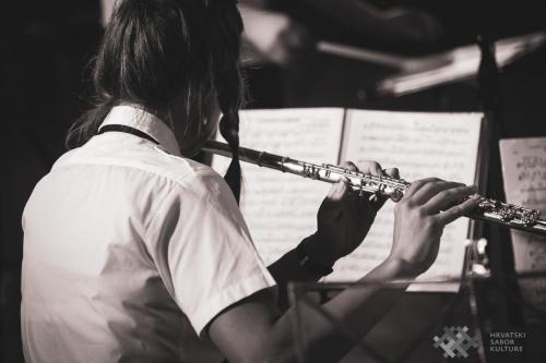 Orkestar DVD GD20